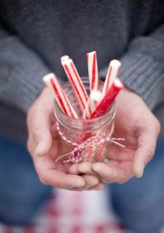 Hands holding peppermint sticks