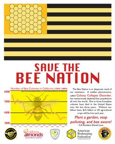 Save The Bee Nation