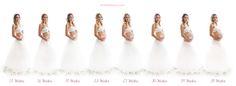 maternity timeline photos - Google-Suche