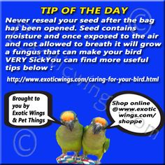 How to store seed for Pets and out door birds!!