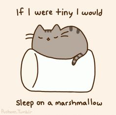 If I were tiny I would sleep on a marshmallow