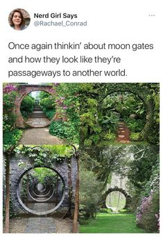 Cool Places To Visit, Places To Travel, Places To Go, Mother Earth, Mother Nature, Future Buildings, Fun Facts, Random Facts, Collage Background
