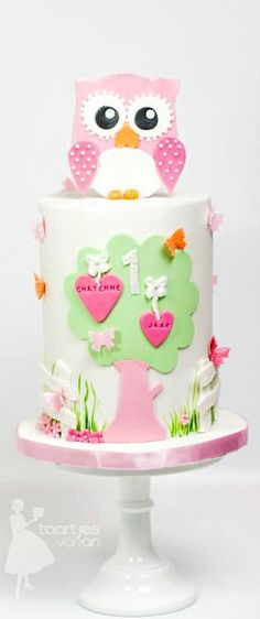 Sweet Girly Owl Cake
