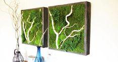 Obrazy Erin Kinsey zaujmú na prvý pohľad! Namiesto štetcov a farieb používa živý zelený mach a iné vždyzelené rastlinky. Machové obrazy, umenie, nápad
