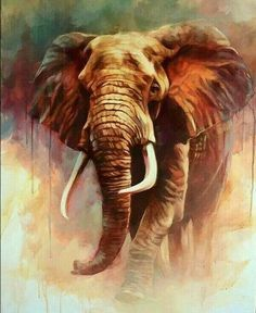 : 30 Beautiful and Hyper Realistic Acrylic Paintings for your inspiration acrylic animalPainting Beautiful birdPainting blackandwhitePainting catPainting christmasPainting coolPainting disneyPainting easyPainting HyperRealistic Inspiration Paintingcolors Wildlife Paintings, Wildlife Art, Animal Paintings, Animal Drawings, Acrylic Paintings, Paintings Of Elephants, Elephants Photos, Acrylic Art, Art Paintings