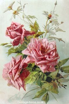 Vintage Home Shop - Pink Roses and Daisies; a Victorian Print by Catherine Klein Art Vintage, Vintage Romance, Vintage Flowers, Vintage Prints, Vintage Floral, Decoupage Art, Decoupage Vintage, Rosa Rose, Romantic Cottage