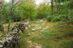 Quelques pas difficiles après les orages en forêt de Braunhie, en allant vers les Barthes...