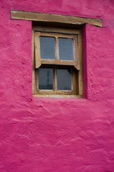Window in a Red Wall -- Datura