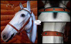 Filet Bêta biothane BR522 16mm Muserolle en 19 mm Frontal TE521-19 mm doublé en BR522 -16 mm  Rivets décoratif étoiles turquoise Taille cheval Bouclerie acier nickelé  A VENDRE : 70€   #creationsurmesure #equicreation #chevaux #cheval #horse #equitation #equestrianstyle #biothane #equestre #faitmain #handmade #sidepull #bridon #endurancehorse #endurance #madeinfrance #artisan #createur #createurfrancais #surmesure #creationunique #bridonlicol #3en1 #equeationequestre #équipementéquitation