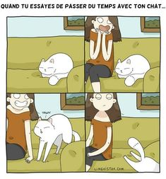 24 Fresh Hilarious Cat Comics By Brilliant Artist Lingvistov - World's largest collection of cat memes and other animals Crazy Cat Lady, Crazy Cats, I Love Cats, Cool Cats, Cat Comics, Funny Comics, Cat People, Cat Quotes, Cat Life