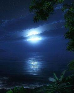 Ночное лунное море
