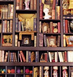 books and curiosities
