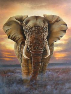 l'éléphant - Painting,  100x81 cm ©2008 par Laurent Coquard -  Peinture