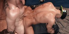 """alphamalenyc: """"faggots, when u get pounded, stay in position; back arched, knees spread, ass back, hands where I can see em. """""""