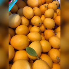 Just a small harvest. Follow Me On Instagram, Harvest, Orange, Fruit, The Fruit