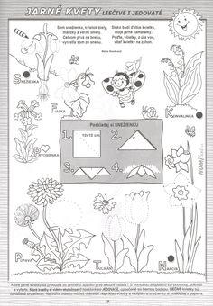 Spring Flowers, Worksheets, Bullet Journal, Jar, Hand Embroidery, Summer, Crafting, Literacy Centers, Jars