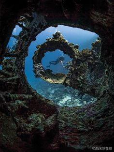 carnatic shipwreck red sea underwater scuba diver