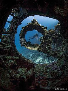 carnatic shipwreck red sea underwater scuba diver