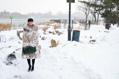 fur & snow