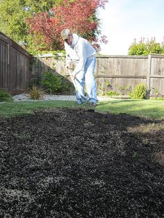 How to Seed Lawn