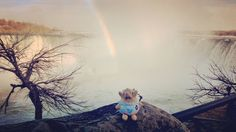 Confetti Togepi is at the end of the rainbow! Misty Niagara Falls.  #pokemon #togepi #anime #crochet #crocheting #amigurumi #kawaii #artsandcrafts #hobby #diy #toyphotography #toytraveler #traveltoy #explore #travel #tourist #tourism #adventure #niagarafalls #waterfall #niagara #rainbow #doublerainbow by go_togepi