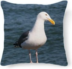 Seagull looking at you Pillow from Print All Over Me