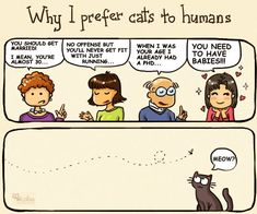 Why I Prefer Cats To Humans