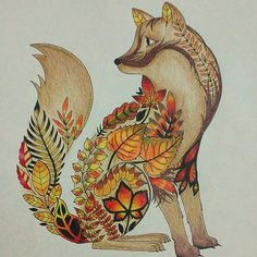 secret garden coloring book fox - Google Search