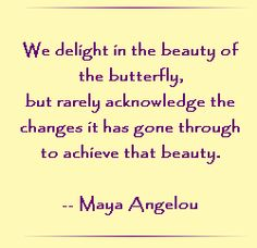 we-delight-in-the-beauty-of-the-butterfly
