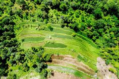 Devostock Outdoor Nature Aerial Shot Agriculture Bird S Eye View Boxing Images, Three Little Birds, Like Image, Glass Birds, Birds Eye View, Photo Library, Free Stock Photos, View Photos, Agriculture