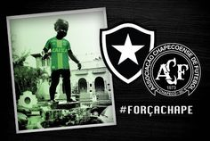Blog do FelipaoBfr: Botafogo retoma os treinamentos para buscar a vaga...