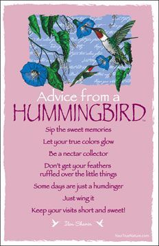 Advice from a HUMMINGBIRD  ╰☆╮skymomma╰☆╮
