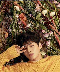 Listen to every Astro track @ Iomoio Asian Actors, Korean Actors, Cha Eunwoo Astro, Astro Wallpaper, Lee Dong Min, Sanha, Kpop, Poses, True Beauty