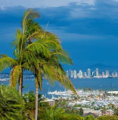 8 fantastic things to do in San Diego besides the zoo! >> Which is your favorite?