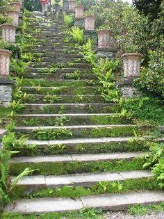 Garden stairs bantry house cork ireland