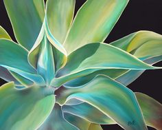 This is a pastel painting of a Blue Agave plant. I love the incredible depth that these spiny succulents take on in the sunlight. I really enjoyed painting it. Agave Plant, Cactus, Desert Art, Art Graphique, Pastel Art, Watercolor Paintings, Watercolors, Leaf Paintings, Flower Art