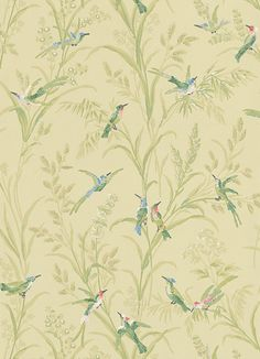 Augustine by Thibaut - Green / Multi - Wallpaper : Wallpaper Direct Green Wallpaper, Fabric Wallpaper, Chill Out Room, Designer Wallpaper, Shades Of Green, Nature, Lounge, Google Search, Airport Lounge