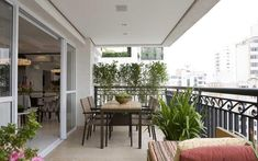 O arquiteto Marcelo Rosset optou pelo uso de cerca viva composto por exemplares de murta. A espécie funciona como fechamento e garante privacidade. Foto: Divulgação
