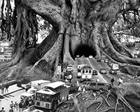 One such visionary is veteran photographer Thomas Barbèy. Raised in Geneva before working for 15 years in Milan, this inspirational artist has spent more than 20 years perfecting his craft. Today he resides in Las Vegas and works exclusively in black and white, including sepia toning, masterfully transforming colorless photomontages into surrealistic fine art.