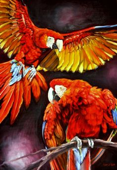 Scarlet Macaws by ~veracauwenberghs on deviantART ~ tropical art
