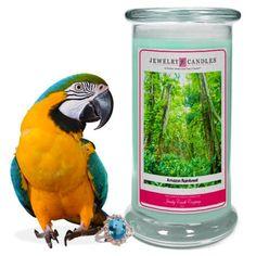 Amazon Rainforest Jewelry Candle