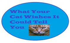 A funny look at what your cat might say to you if it could.