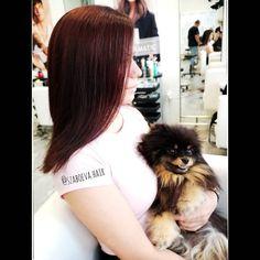 """Szabó Éva Fodrász (@szaboeva.hair) feltöltött egy fényképet az Instagram-fiókjába: """"❤️🐕 _________________________________ . . . . . . . . #haj #fodrász #frizura #szaboevahair…"""" Dogs, Instagram, Pet Dogs, Doggies"""