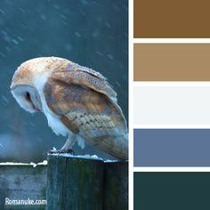 in_color_balance_650.jpg (400×400)