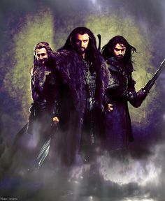 The Heirs of Durin - from The Hobbit<<<wait I thought Fili was the serious one and Kili was the playful one........they probably got their personalities mixed up ;)