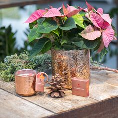 """Savour the decadence of shimmering copper hues with this exquisite holiday combination. Our signature homegrown """"Lipstick"""" Poinsettia, carefully nestled in a 8″x 8″ thick glass cylindrical pot, detailed with a distressed faux copper finish, creates a stylish warmthin your home. Paired with our limited edition Thymes simmered cider copper mug candle, and wax melts, as […]"""