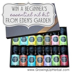 Win a Beginner's Essential Oil Kit from Eden's Garden!!