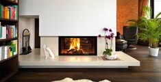 Spartherm Feuerungstechnik - fireplace inserts, heating inserts, in a variety of models