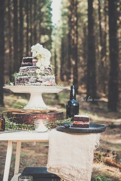 In My Dreams, There is a Cake in a Forest — Two Loves Studio   Food Photography