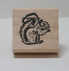 Hey, I found this really awesome Etsy listing at https://www.etsy.com/listing/115271146/western-grey-squirrel-rubber-stamp